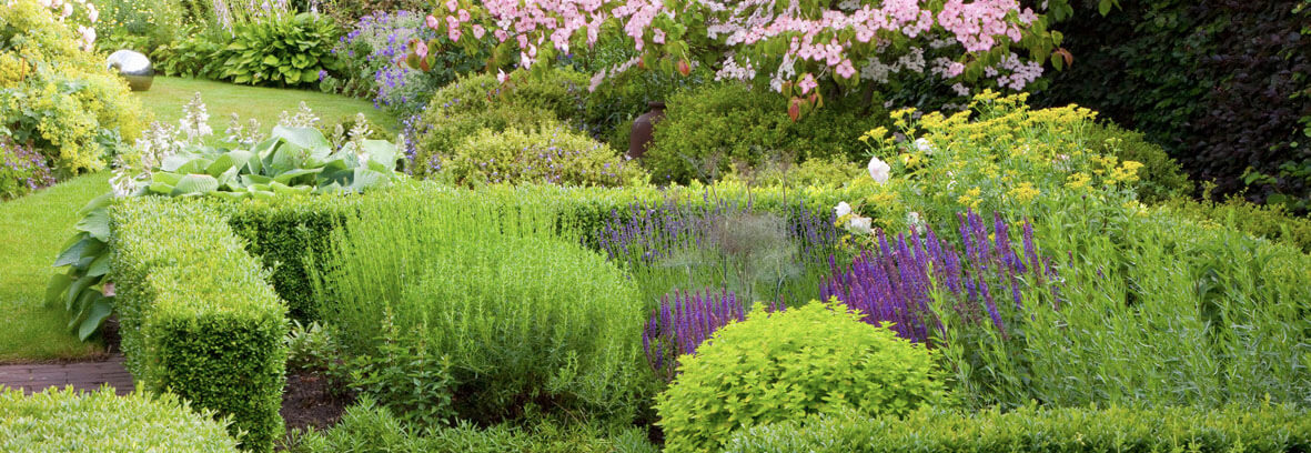 Knot Garden Design Ideas