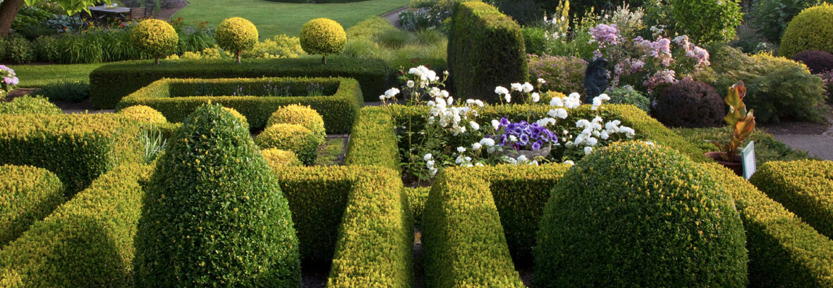 Small knot gardens
