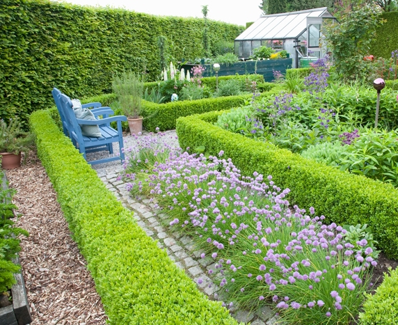 Small knot gardens design ideas