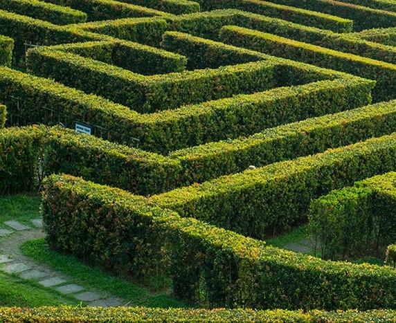Maze Garden design with hedges