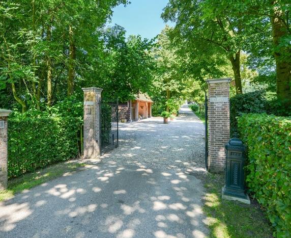 suburban landscaping ideas and design
