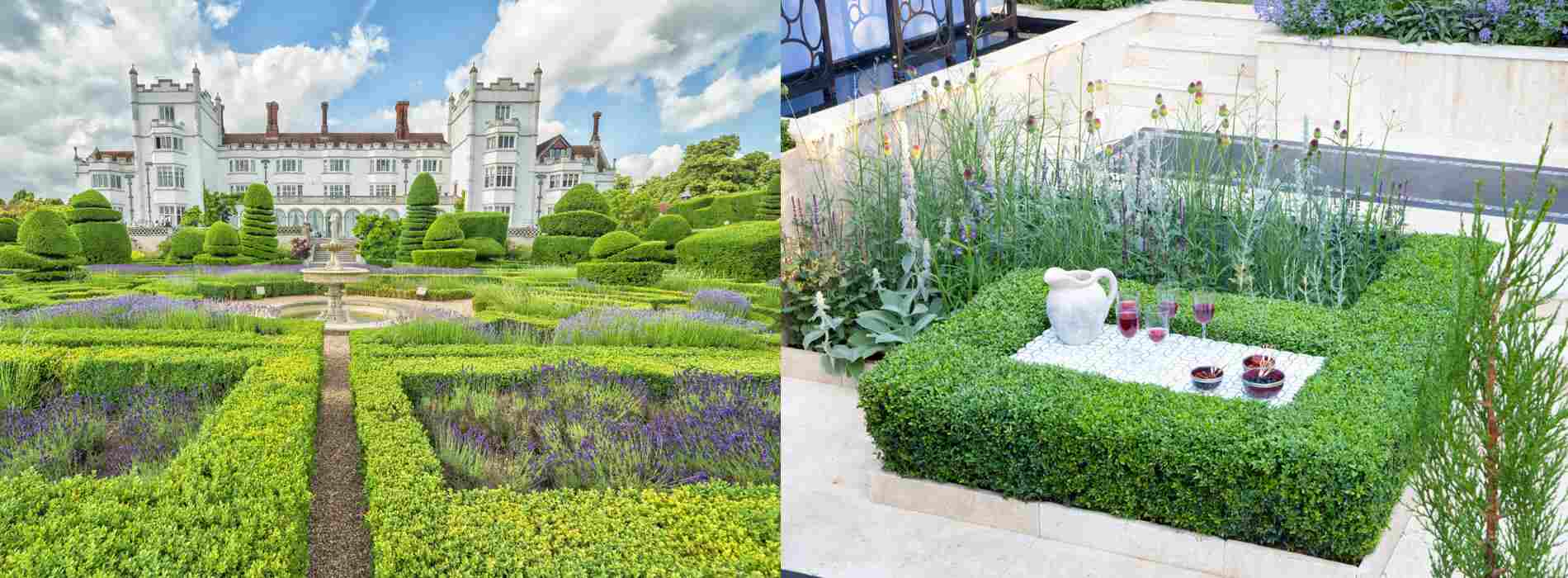 (Buxus) Boxwood hedges are equally at home in a grand estate garden and in a clean, modern setting.