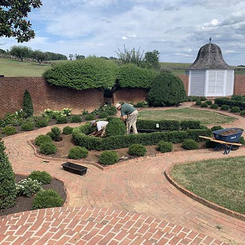 August 2019 Virginia
